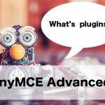 ガチで便利過ぎる!TinyMCE Advancedの設定方法とオススメの使い方!