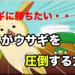 カメがウサギを圧倒する方法!