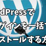 WordPressプラグインを一括でインストール&有効化する手順を徹底解説!